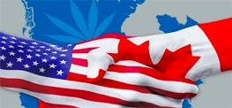 Order Cannabis by Mail - US Vs Canada Featured image
