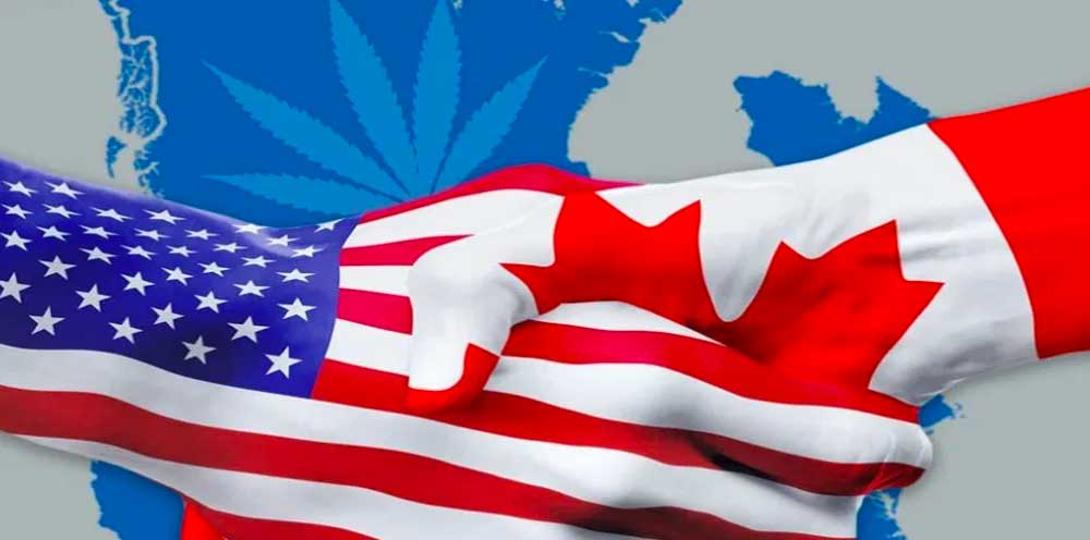 Order Cannabis by Mail - US Vs Canada