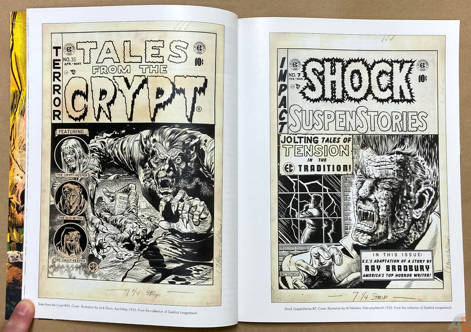 Tales From The Crypt Exhibition Catalog interior 4