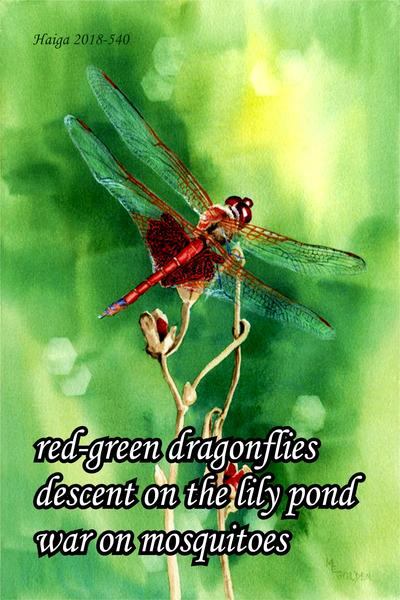 Dragonflies Poems 5