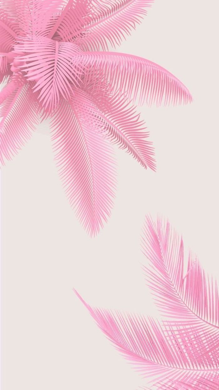 pink background pink palm leaves drawing aesthetic iphone wallpaper