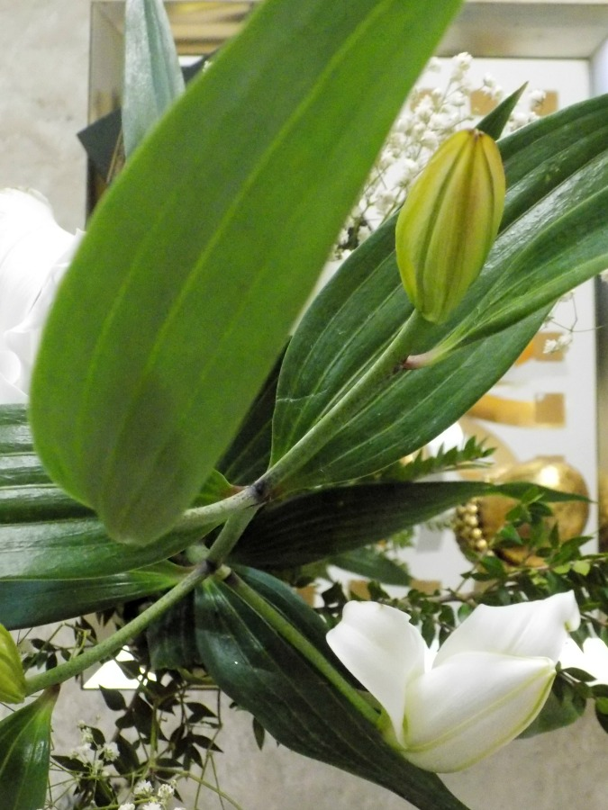 Green leaves and flowers, Nine tips to transition holiday decor to winter