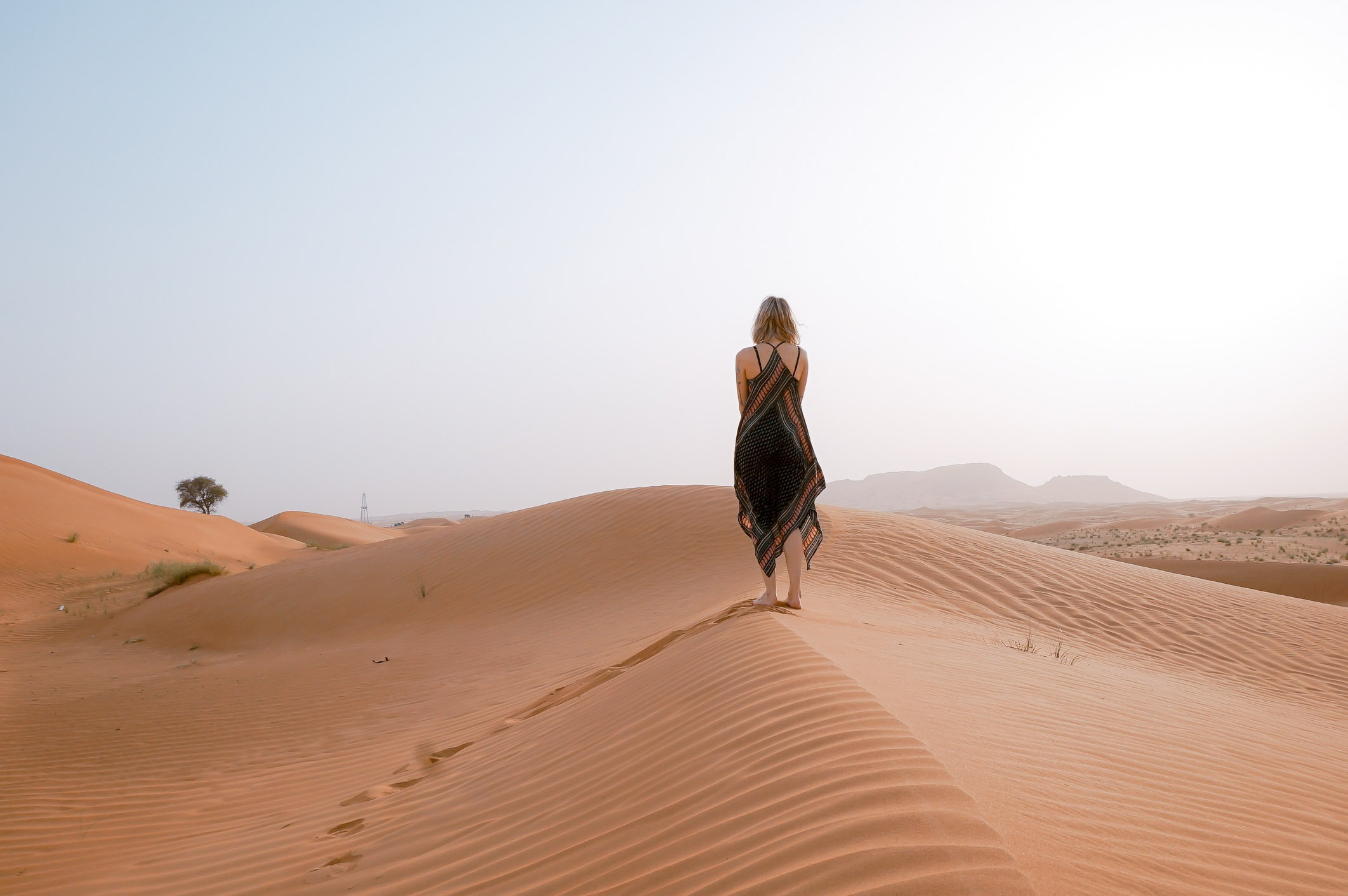 Dubai Facts - 10 Surprising Things I Bet You Didn't Know About Dubai