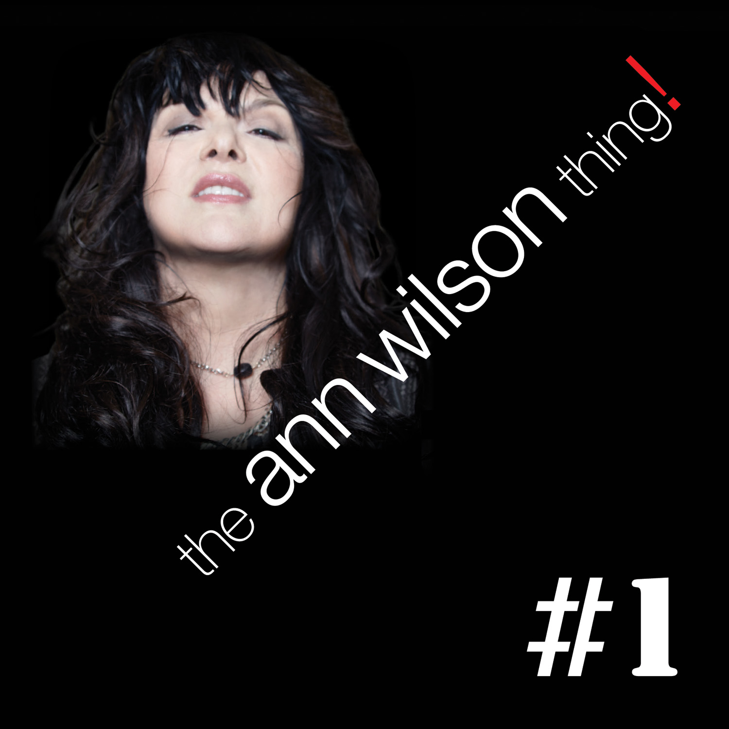 Ann Wilson Gears up for New Solo EP- The Ann Wilson Thing