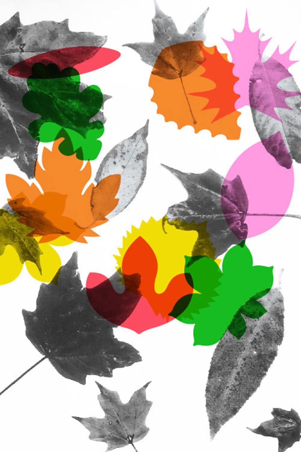 An autumn leaf kids printable with tons of uses! We made a coloring page, a leaf art garland, a collector's book and more!