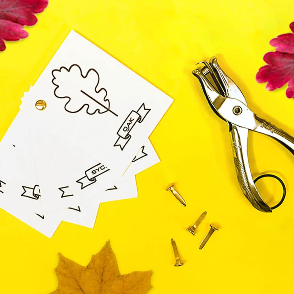 Our free printable kids fall leaf activity kit has so many fun uses! From  coloring pages, to  leaf art, fall leaf puppets, a mini leaf ID book and more! | via barley & birch