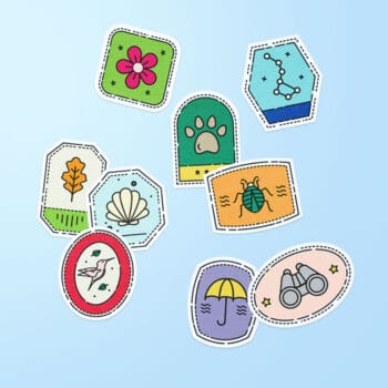 Nature Explorer Trunk Sticker Set Preview