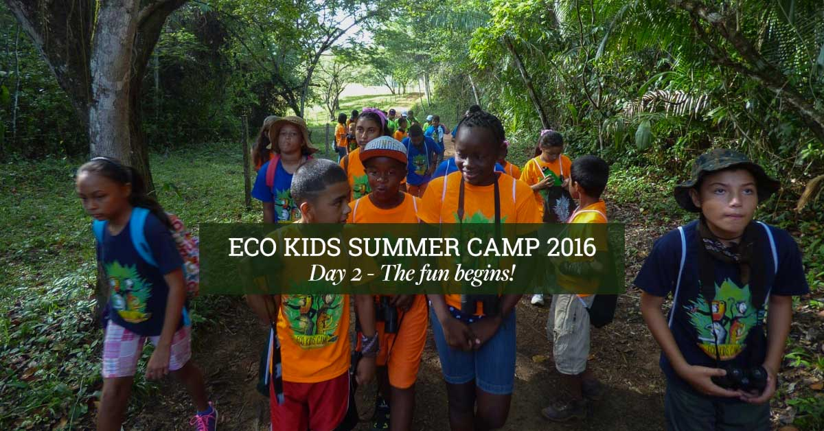 belize_eco_kids_summer_camp_chaa_creek_day_2_2016