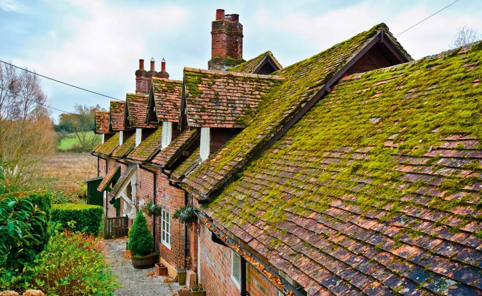 old-roof-over-cottages-green-moss-dormers-edit