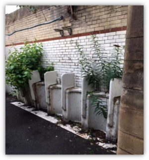 The old toilets