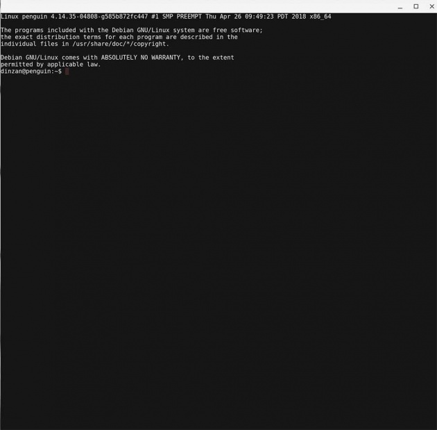 activate Linux apps on Chrome OS