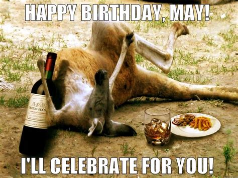 Happy Birthday From Australia Funny Images Yellow Blogtopus