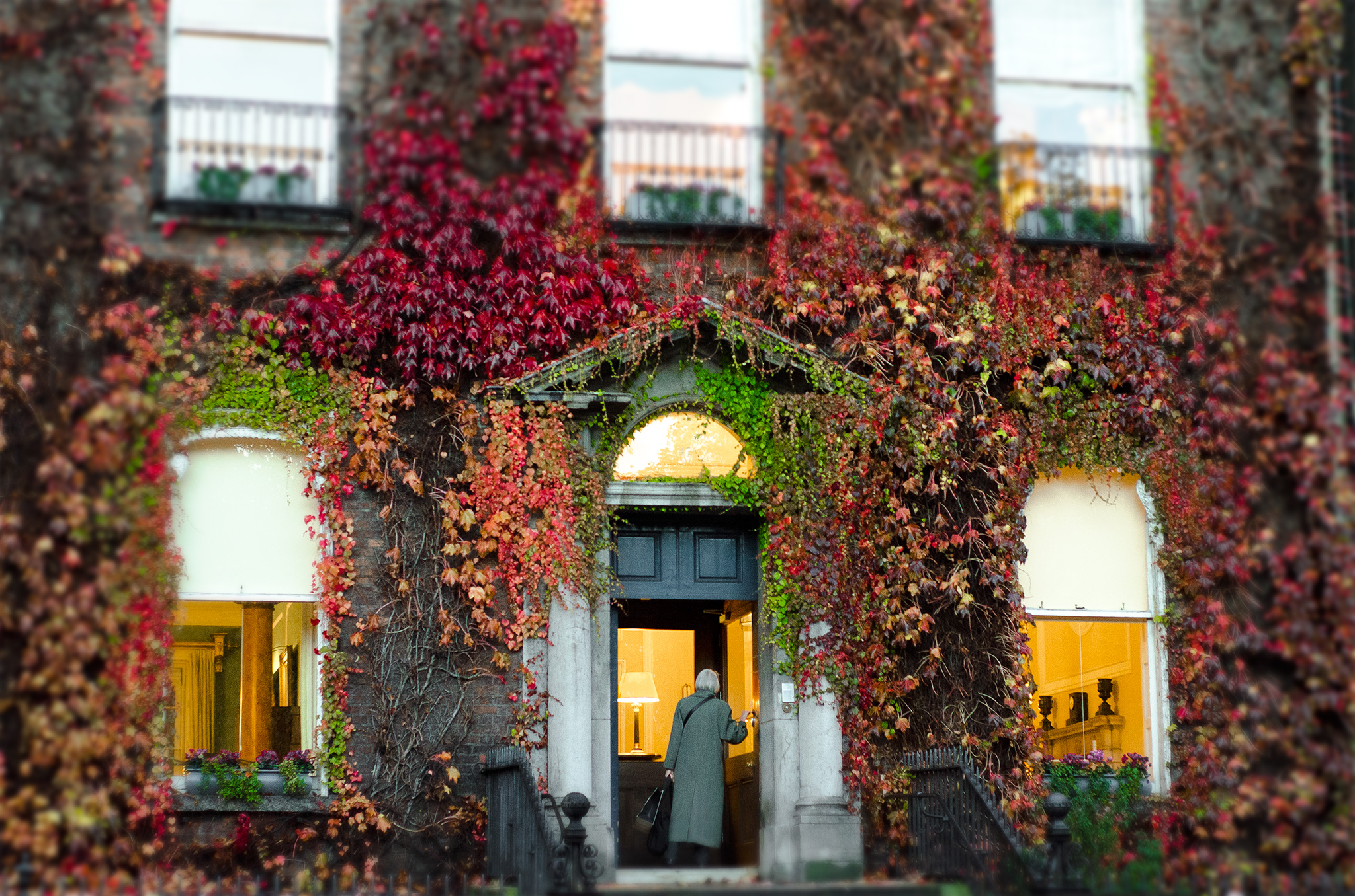 dublin apartment building vines and lady