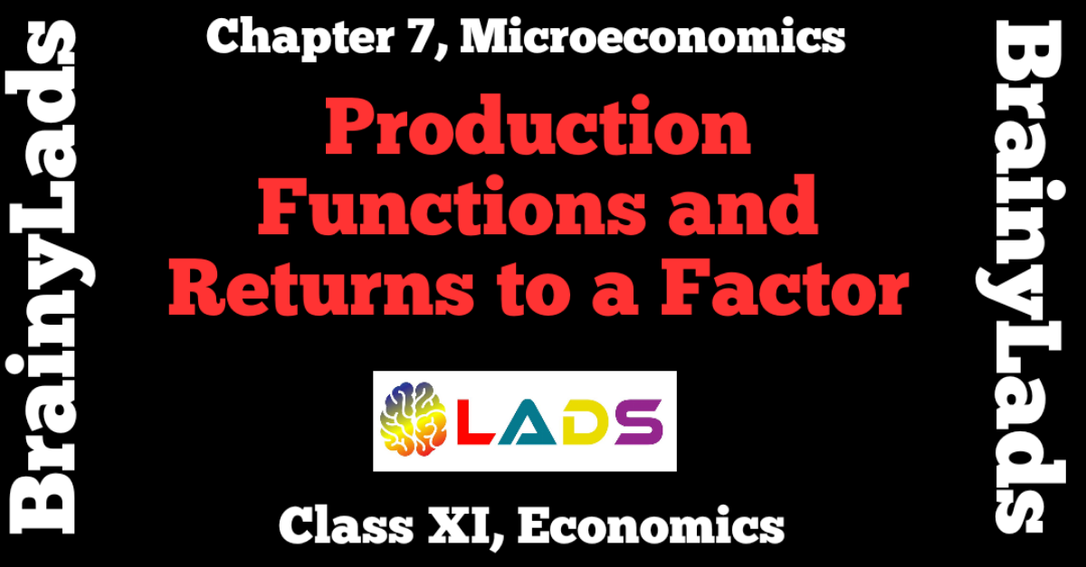 Production Function And Returns To A Factor