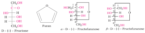 Structure of Fructose