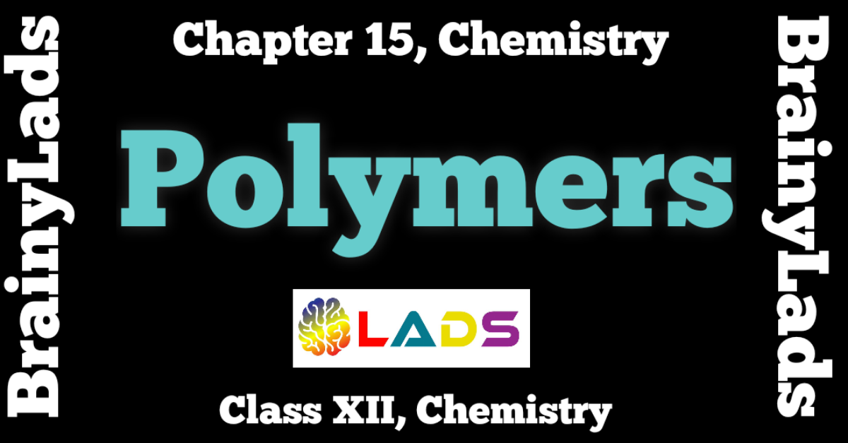 Polymers Class 12