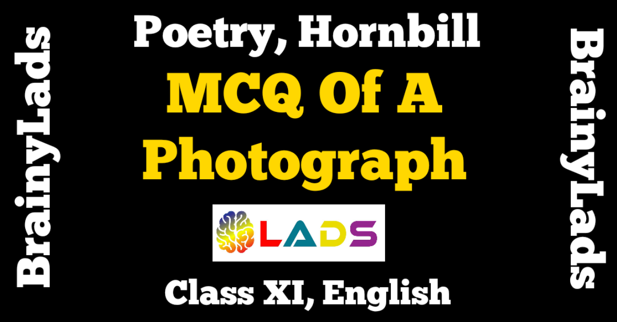 MCQ of A Photograph