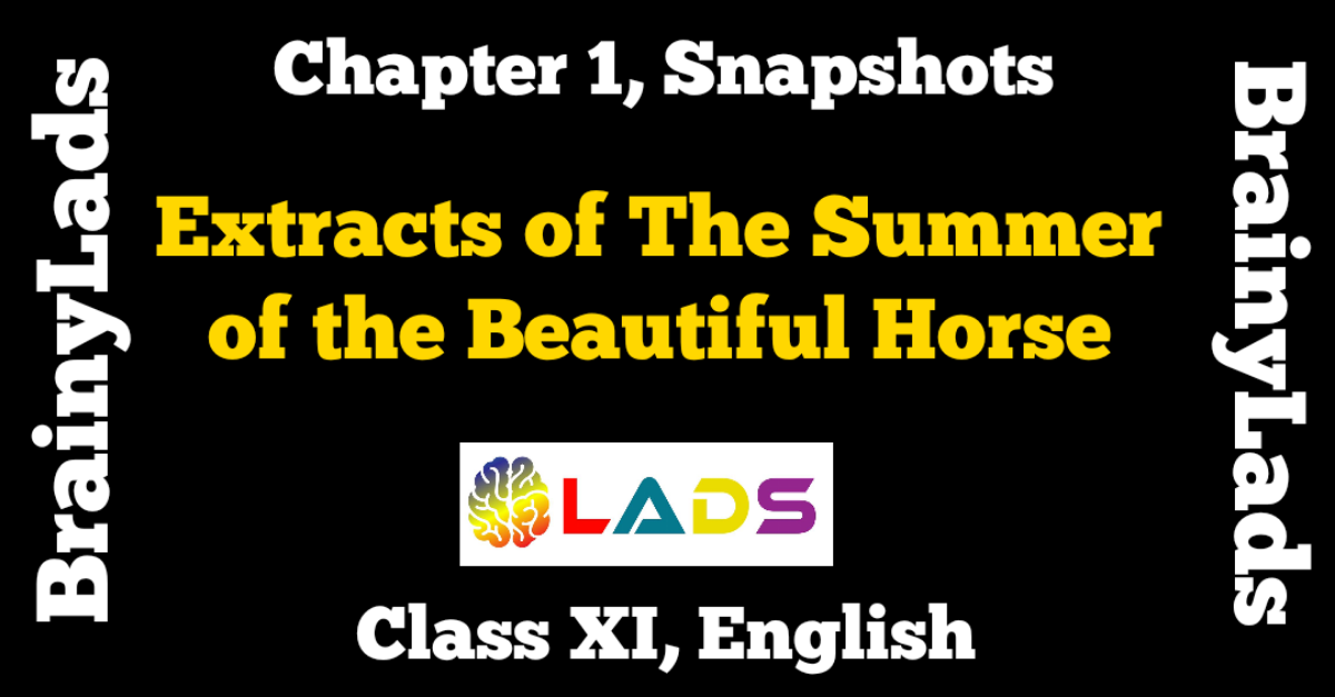Extract Based Questions of The Summer of the Beautiful White Horse