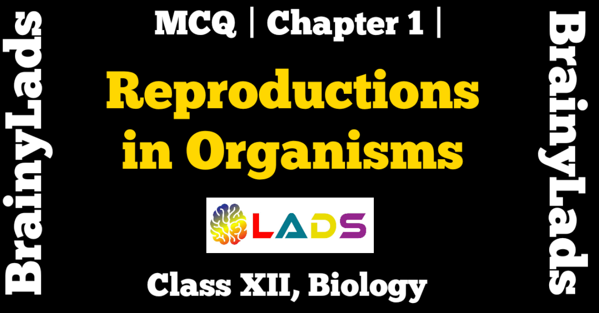 MCQ of Reproduction in Organisms