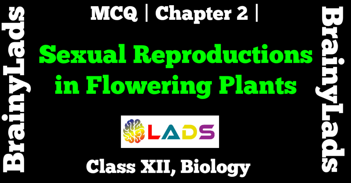 MCQ Of Sexual Reproduction in Flowering Plants