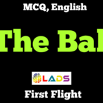 MCQ of The Ball Poem