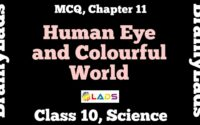 MCQ of Human Eye and Colourful World