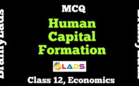 MCQ of Human Capital Formation