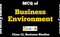 MCQ of Business Environment