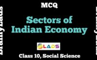 MCQ of Sectors of Indian Economy