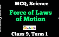 MCQ of Force and Laws of Motion
