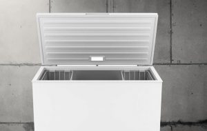 best chest freezer for meat storage
