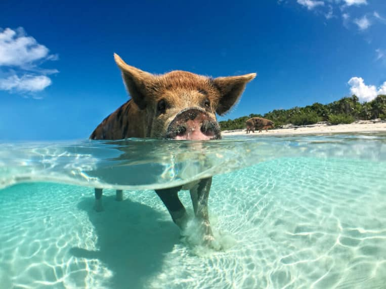 15 Epic and Unusual Beaches That You Won't Believe