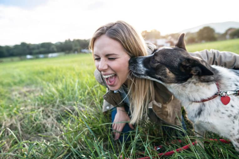 Ten Reasons Why Keeping a Pet Is a Good Idea