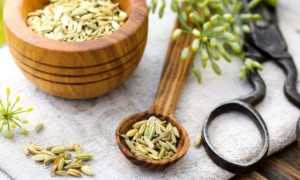 12 Fennel Seed Health Benefits