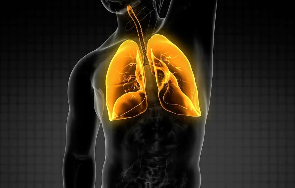 Common Lung Problems