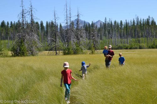 hiking with kids meadow