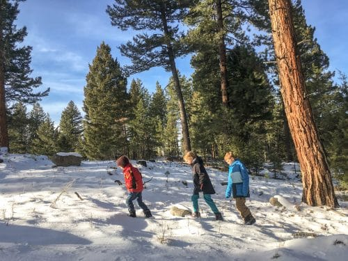 kids hiking through forest in the snow