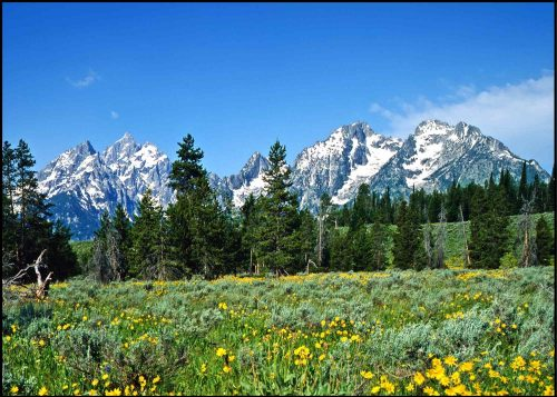Grand Teton Hike View