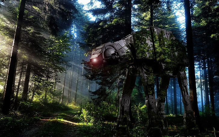 Star Wars Endor Wallpaper 4k