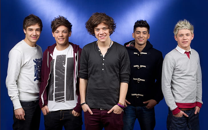 Download Lagu One Direction History