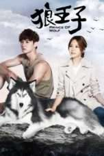 Nonton Streaming Download Drama Prince of Wolf (2016) Subtitle Indonesia
