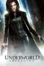 Nonton Streaming Download Drama Underworld: Awakening (2012) jf Subtitle Indonesia