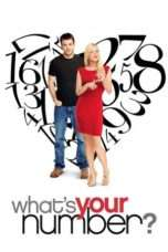 Nonton Streaming Download Drama What's Your Number? (2011) Subtitle Indonesia