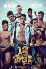 Nonton Streaming Download Drama 12 Golden Ducks (2015) jf Subtitle Indonesia
