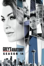 Nonton Streaming Download Drama Grey's Anatomy Season 14 (2017) Subtitle Indonesia