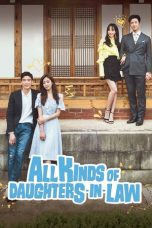 Nonton Streaming Download Drama All Kinds of Daughters-in-Law (2017) Subtitle Indonesia