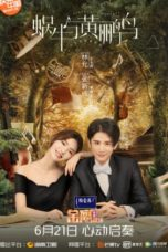 Nonton Streaming Download Drama Symphony's Romance (2020) Subtitle Indonesia