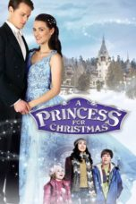Nonton Streaming Download Drama Nonton A Princess for Christmas (2011) Sub Indo jf Subtitle Indonesia