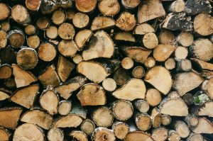 Different Wood Log Sizes For Campfire