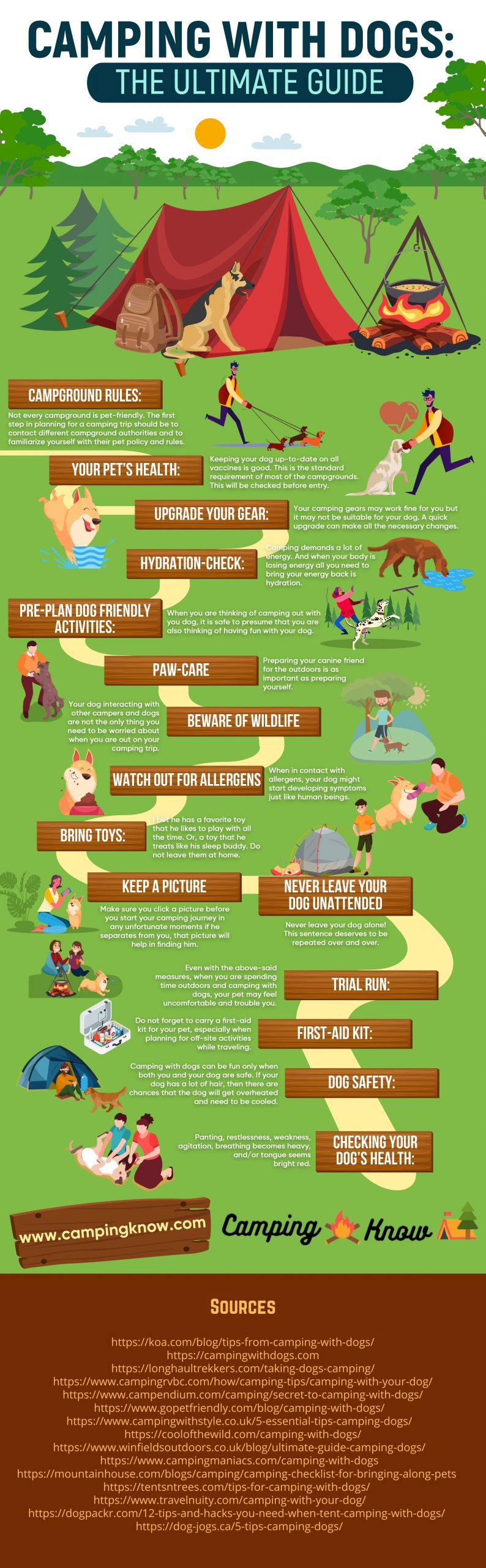 Camping With Dogs Infographic